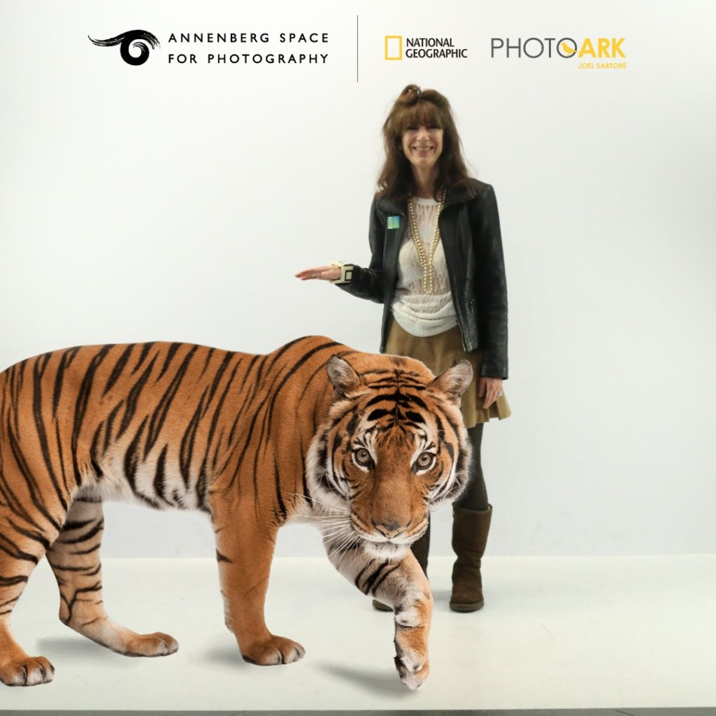 image of Alexandra Darraby with a tiger