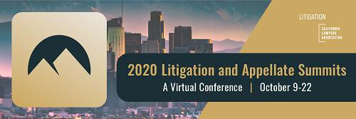 2020 Litigation Summit